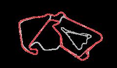 Silverstone Track